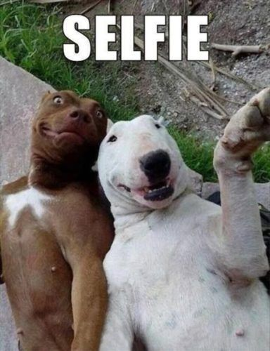 Dia de selfie 1
