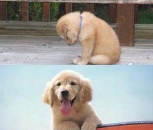 Reações diferentes