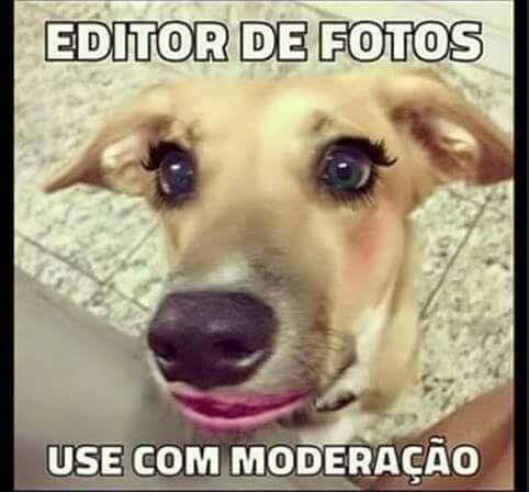 Editor de fotos 1