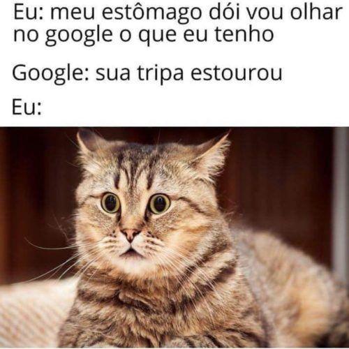 Doutor google 1
