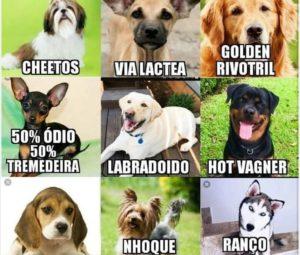 Qual a raça do seu cão?